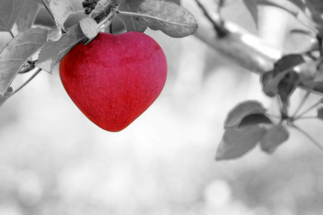 Unconditional Love – A Reality or Myth?
